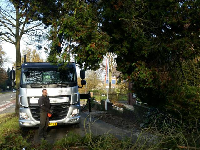 Boom Verwijderen uit Tuin Tom van den Heuvel