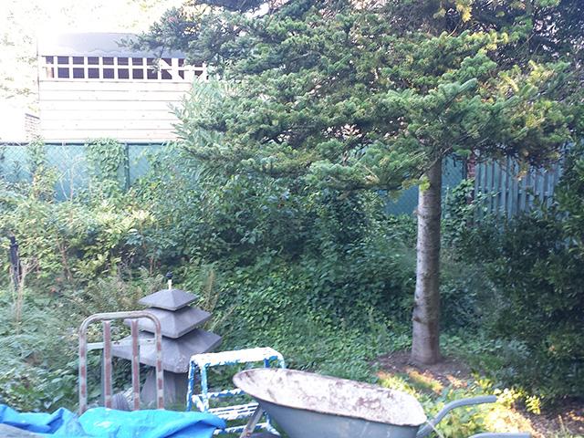 Hoogteverschil Tuin 5 - Tom van den Heuvel te Venlo